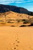 положение США Юта песка пинка парка kanab дюн коралла Стоковые Изображения RF
