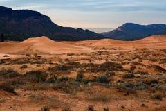 положение США Юта песка пинка парка kanab дюн коралла Стоковые Изображения