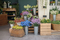Положение цветочного магазина для фотографии Стоковые Фото