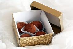 положите шоколады в коробку Стоковые Фото