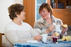 Положительные женские пенсионеры выпивая кофе и беседовать стоковая фотография