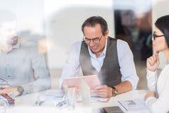Положительные коллеги работая в офисе с удовольствием Стоковое Фото