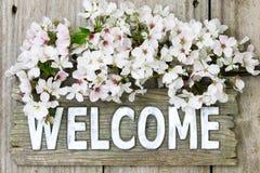 Положительный знак с букетом весны белых цветков Стоковые Изображения