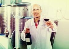 Положительный работник винодельни держа бокал вина Стоковая Фотография