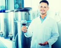 Положительный работник винодельни держа бокал вина Стоковые Фото