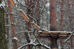 Полоса препятствий в зиме Стоковое Изображение