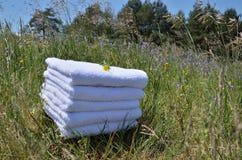 Полотенца с полевыми цветками Стоковая Фотография RF