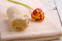 Полотенце и toiletries Стоковые Фото