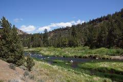 Пол долины нечестного реки Стоковое фото RF
