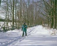 По пересеченной местности катаясь на лыжах Онтарио Канада стоковое изображение