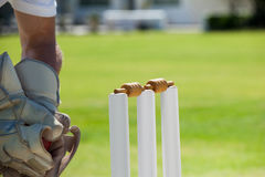 Подрезанное изображение шарика wicketkeeper заразительного за пнями стоковые изображения