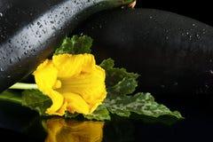 Подрезанные courgettes с цветками на черной предпосылке Стоковые Фотографии RF