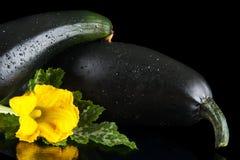 Подрезанные courgettes с цветками на черной предпосылке Стоковое Изображение RF