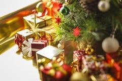 Под рождественской елкой стоковая фотография rf