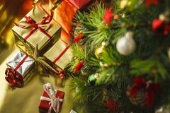 Под рождественской елкой стоковая фотография