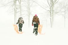 подростки скелетонов пущи Стоковое Фото