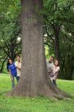 Подросток с деревом в парке Стоковое Изображение RF