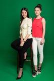 2 подруги брюнет представляя на зеленой предпосылке стоковое фото rf