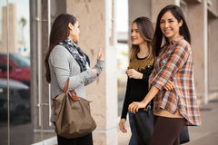 Подруги встречая на торговом центре Стоковые Фото