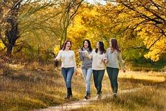 Подруги в парке осени Стоковое Изображение RF