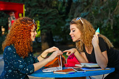 Подруги в парке с компьтер-книжкой Стоковое Изображение RF
