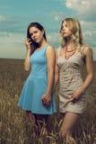 2 подруги в поле рож Стоковые Изображения RF