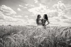 2 подруги в поле Стоковые Изображения