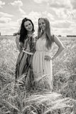 2 подруги в поле Стоковое фото RF