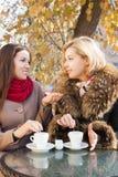 Подруги говоря и выпивая кофе Стоковые Фото