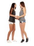 Подруги говоря и имея потеху Стоковое Изображение