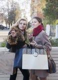 Подруги и покупки Стоковое Изображение