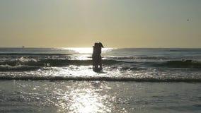 Подруги обнимая на береге песчаного пляжа с их ногами в воде в замедленном движении видеоматериал