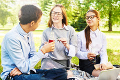 Подруги по школе беседуя Outdoors Стоковая Фотография RF