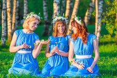 Подруги с венками на их головах, сидя на траве Стоковые Изображения