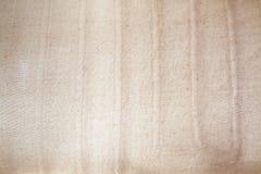 Подсвеченная коричневая текстура Стоковые Фотографии RF