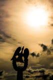 Подсвеченный заход солнца птицы силуэта Стоковые Изображения RF