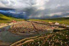 Полуостров лама на сумраке Стоковое фото RF