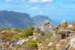 Полуостров накидки сфотографировал от близко львов возглавляет в Кейптауне, Южной Африке Стоковые Фотографии RF