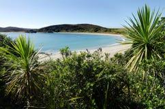 Полуостров Karikari - Новая Зеландия Стоковые Изображения