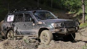 Полученное SUV вставило в грязи и пробовать пойти вне через ворот в лесе акции видеоматериалы