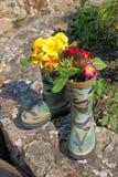 Получите весну в вашем шаге! Стоковое Фото