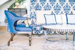Подушка на софе и стуле Стоковые Фото