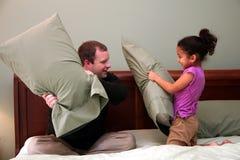 подушка дракой Стоковые Фото