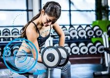 Подходящая женщина выполняя тренировку скручиваемости бицепса в спортзале против цифрового интерфейса фитнеса Стоковая Фотография
