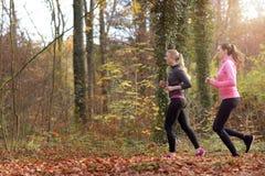 Подходящая молодая женщина 2 jogging совместно Стоковые Изображения RF