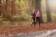 Подходящая молодая женщина 2 jogging совместно Стоковое Фото