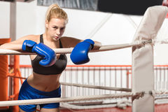 Подходящая решительно склонность девушки боксера на веревочках Стоковое Изображение RF
