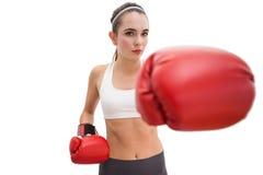 Подходящее брюнет в перчатках бокса Стоковые Фотографии RF