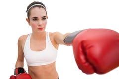Подходящее брюнет в перчатках бокса Стоковое Изображение