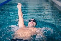 Подходящее заплывание человека на задней части Стоковые Фото